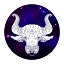 tauras icon
